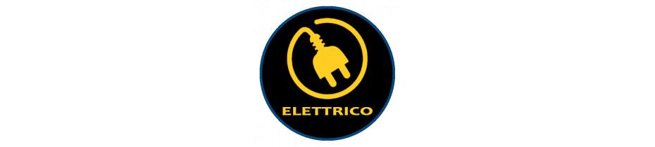 Friggitrici Elettriche, Friggitrici Elettriche Professionali